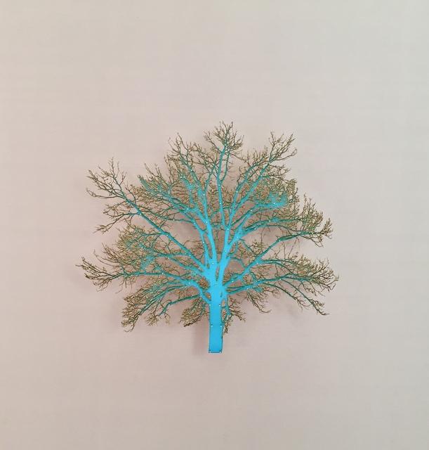 , 'Oak Tree 1,' 2015, Serena Morton