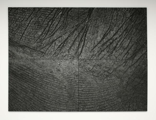 , 'Pelle di grafite (riflesso di uraninite)/Skin of graphite (reflexion of uraninite), ,' 2003-2006, Marian Goodman Gallery