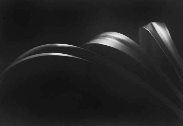 , 'Still Life #659,' 1999, Photography West Gallery