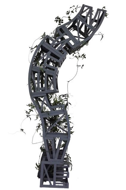 , 'Contingencia,' 2018, Galeria Otros 360º