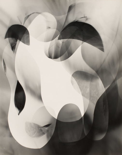 , 'Untitled (organic abstract),' 1940, Robert Koch Gallery