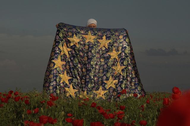 , 'My EU / EuroKorpe,' 2013, Auroom Art
