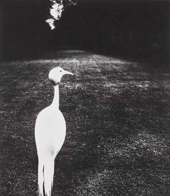 Bill Brandt, 'Evening in Kew Gardens', 1932-1935, Phillips