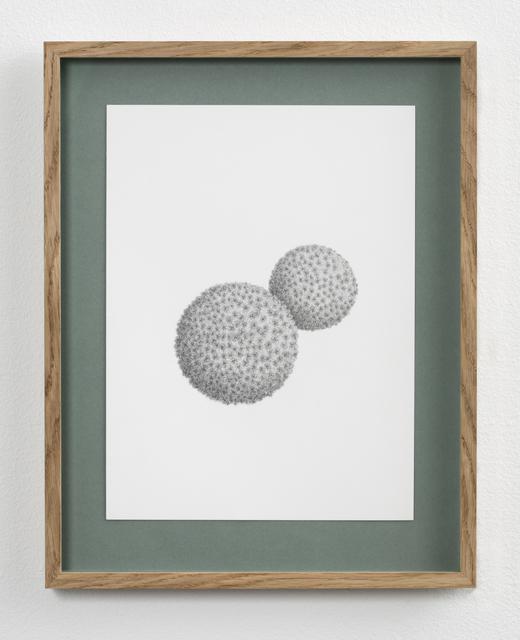 Ann Böttcher, 'Sawara, Japan', 2019, Galerie Nordenhake