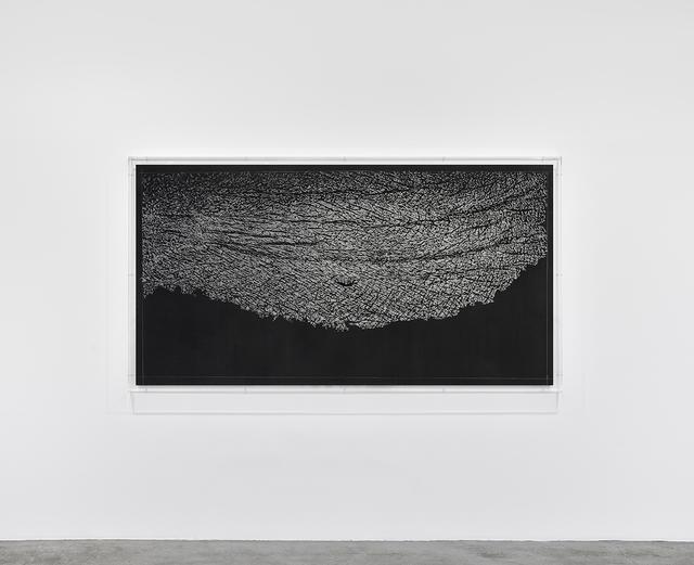 , 'Pugno di grafite – palpebra (Handful of graphite –eyelid),' 2012, Marian Goodman Gallery