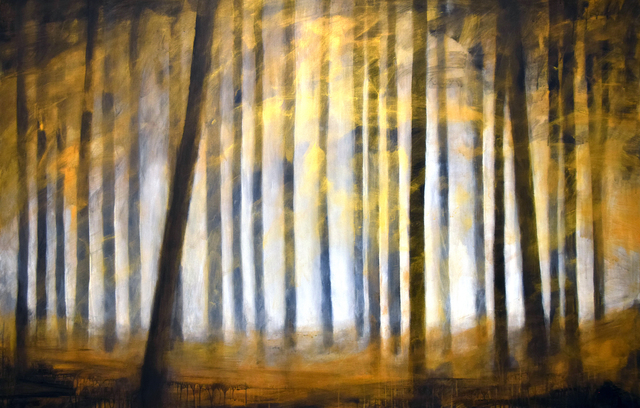 , 'Forest III,' 2018, Area35 Art Gallery