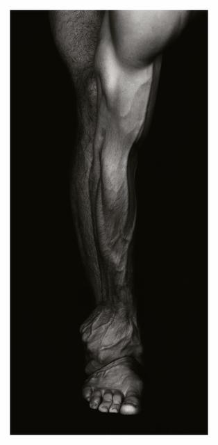 , 'Basics,' 1997, Setareh Gallery
