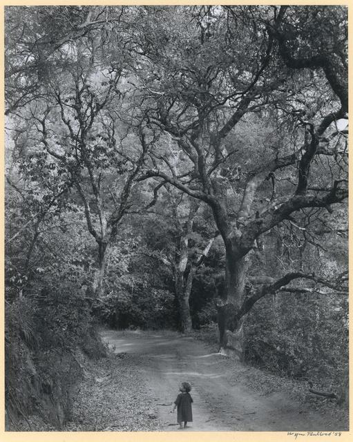 , 'Boy on Forest Road,' 1958, Charles A. Hartman Fine Art
