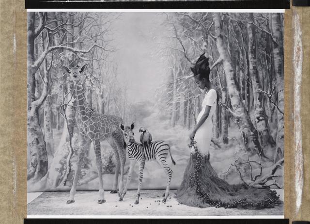 , 'L'Arch de Noé - An African Winter, Cathleen Naundorf, Paris,' 2014, Hamiltons Gallery