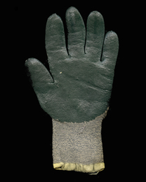 San Quentin Parking Lot: Glove