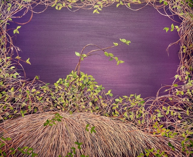 , 'Deep Violet Thicket,' 2012, Susan Eley Fine Art