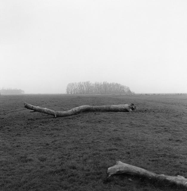 , 'Hinte,' , Galerie f5,6