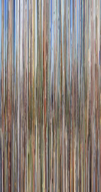 , 'Conelrad v14,' 2016, C. Grimaldis Gallery