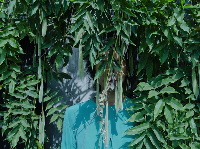 , 'Wisteria ,' 2015, Mariane Ibrahim Gallery