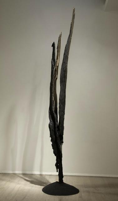 ", 'Flash - 43°24'21.3""N 74°19'14.6""W,' 2013, C. Grimaldis Gallery"