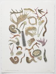 Botanica (Horns)