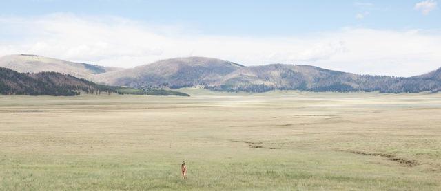 , 'LIFE, Valles Caldera, NM,' 2018, Bruce Lurie Gallery