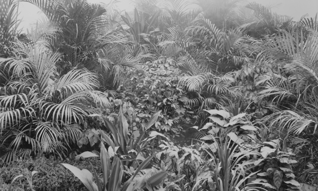 Ji Zhou, '尘 4 / Dust 4', 2011, Boers-Li Gallery