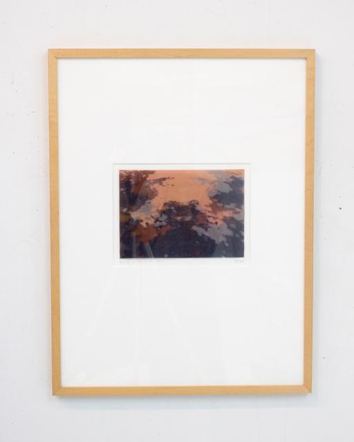 , 'Congruit Universa II,' 1999, False Flag