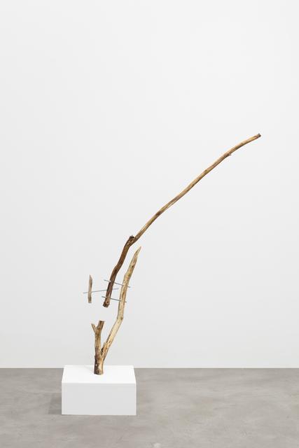 , 'Untitled (1),' 2017, Galerie Anhava