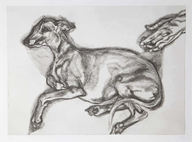Lucian Freud, 'Pluto aged Twelve', 2000, Print, Etching on Somerset White wove paper, Christie's