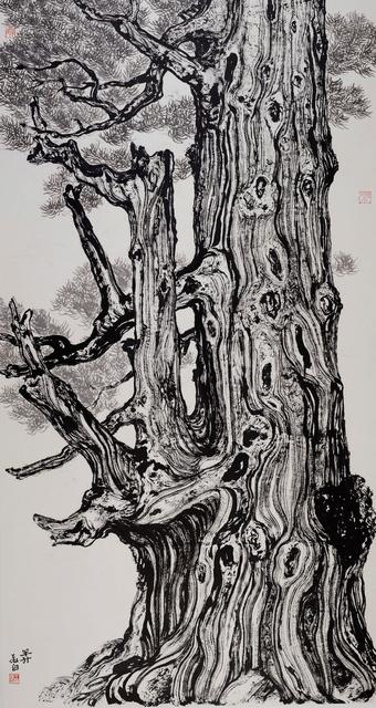 , 'Old Tree 9 深山尋古木 九,' 2014, Rasti Chinese Art