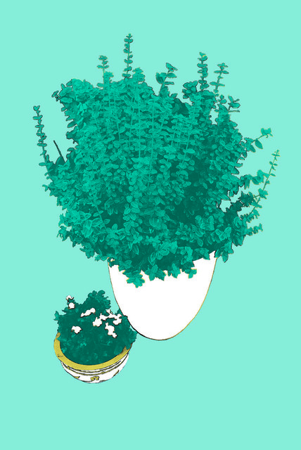 , 'Blue Potted Plant,' 2016, E-Moderne Gallerie
