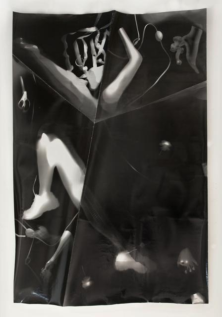 Tatiana Kronberg, 'Untitled #1', 2015, Essex Flowers