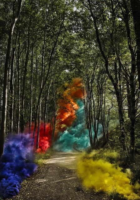 Clara Hallencreutz, 'Signaling Nature - Forest', 2017, DTR Modern Galleries