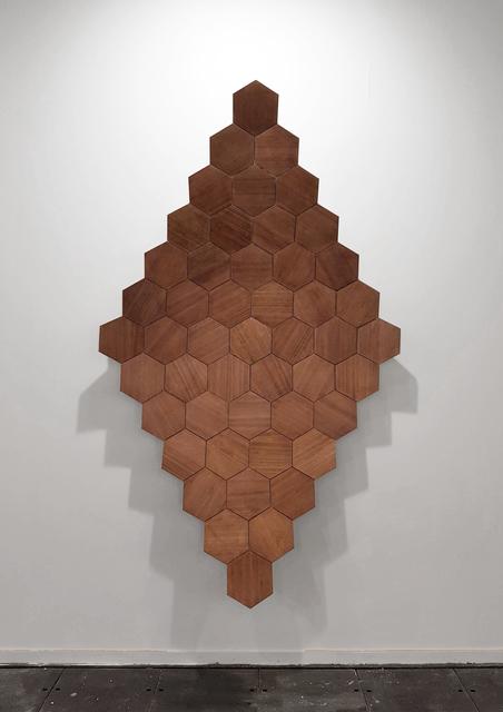 Carlos Nicanor, 'Alvarium lignum', 2018, Galería Artizar