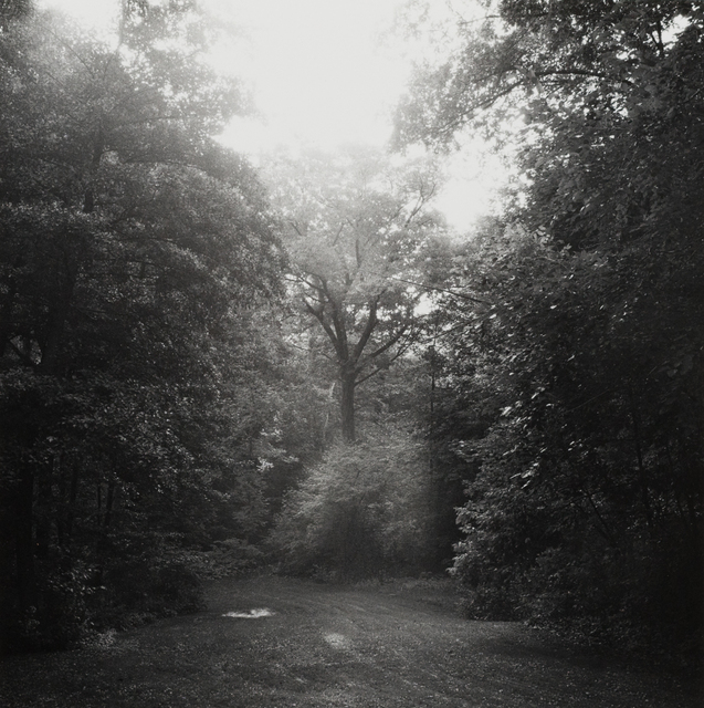 , 'Images of Eden, Milwaukee County Parks - Jacobus,' 1983, The Alice Wilds