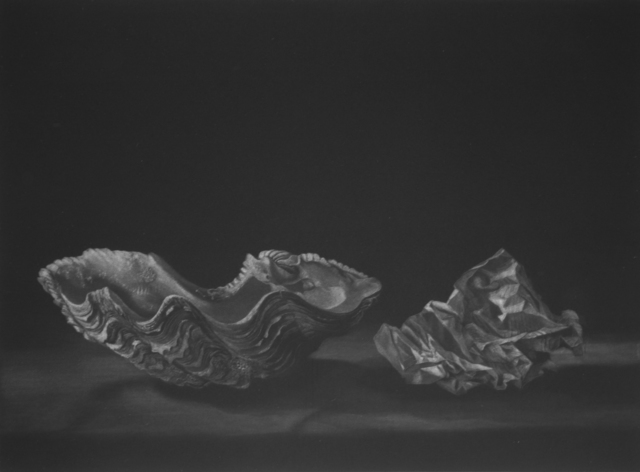 , 'Deux Coquilles,' 2011, Childs Gallery