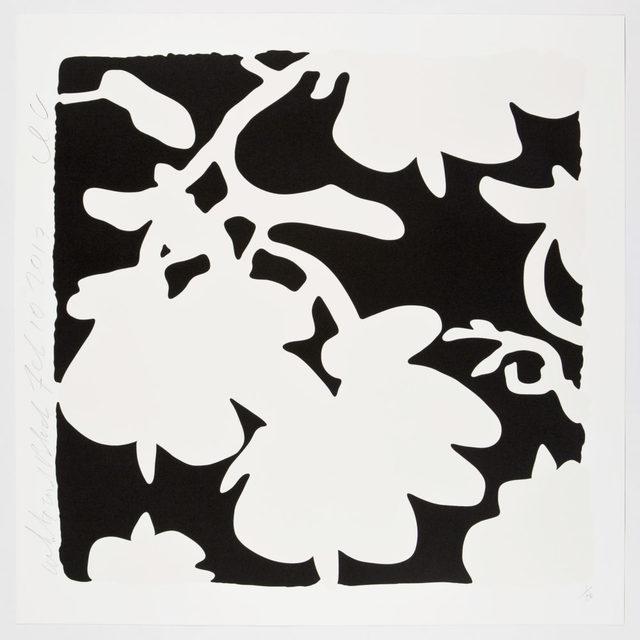 , 'Lantern Flowers (White and Black),' 2017, Maune Contemporary