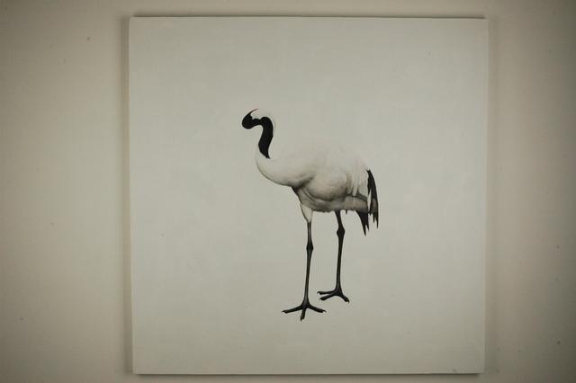 , 'Mindlessness,' 2011, Aye Gallery