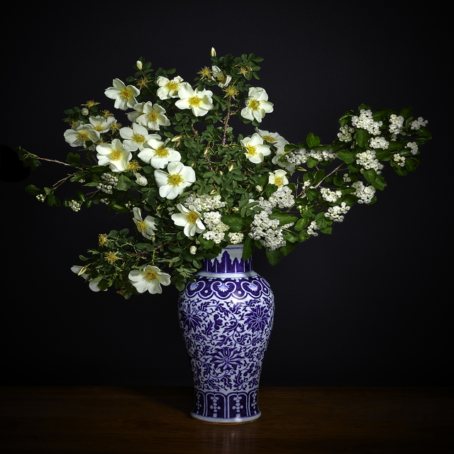 T.M. Glass, 'White Hawthorne & White Shrub Rose in a Blue and White Chinese Vase', 2018, Print, Impression d'archive avec pigments / Archival Pigment Print, Galerie de Bellefeuille