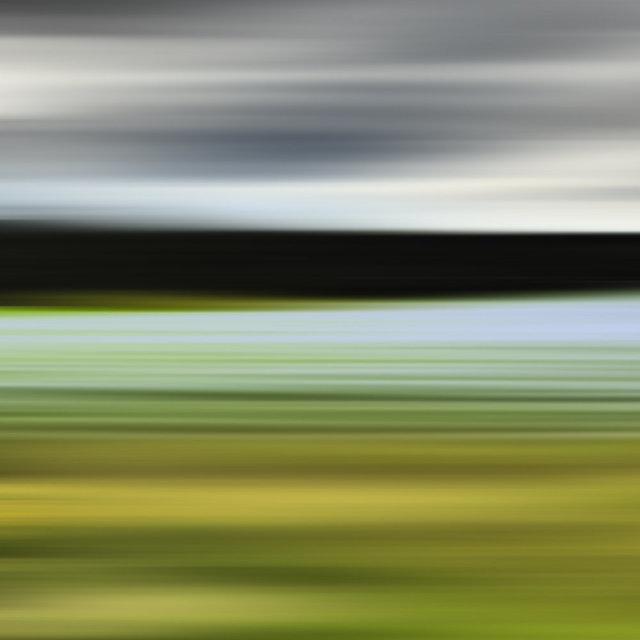 , 'Blue Grass of Sweden,' 2014, Heather Gaudio Fine Art