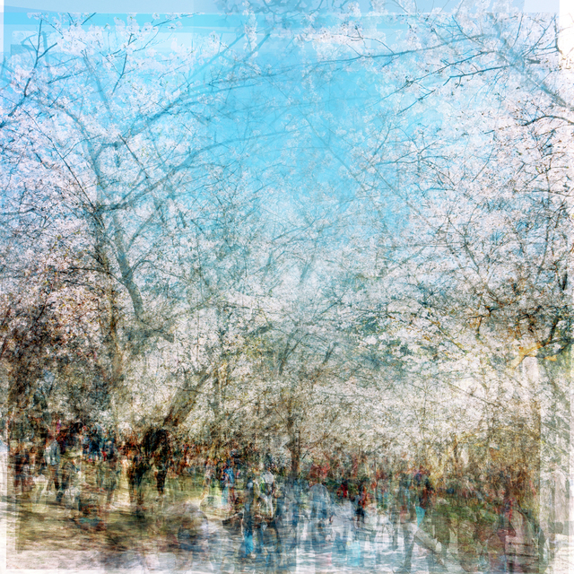 , 'high park blossoms,' 2018, Petroff Gallery