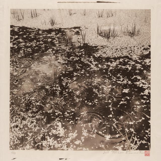 , 'Rainy Moat of Takato Castle, Ina 1, Nagano,' 2015, Micheko Galerie