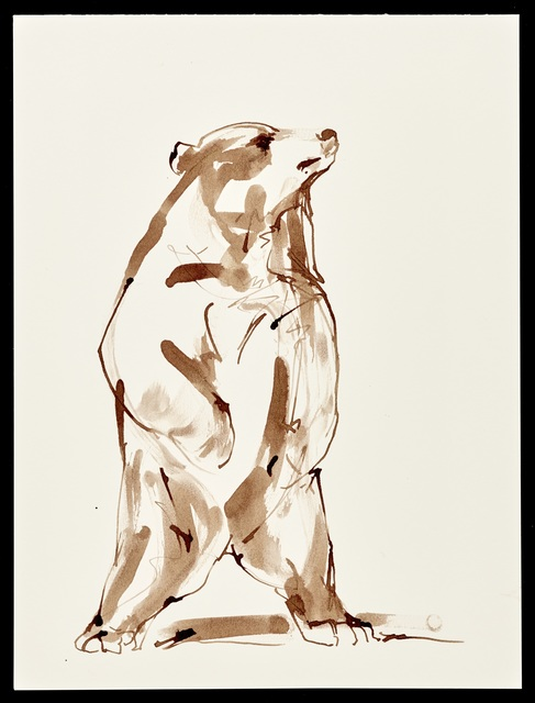 Stephanie Quayle, 'Brown Ink on Paper', Gallery 38