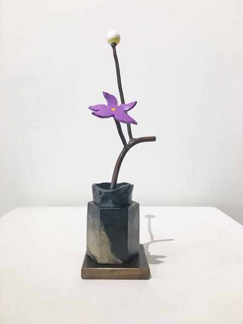 David Kimball Anderson, 'Winter Seed', 2018, Madelyn Jordon Fine Art