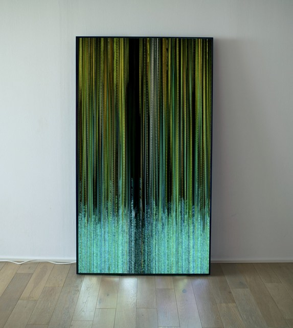 Daniel Canogar, 'Xylem', 2017, Mark Moore Fine Art
