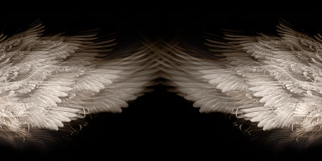 Eriko Kaniwa, 'Wings', 2019, ARTE GLOBALE