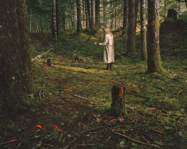 , 'Windfall,' , Cross Mackenzie Gallery