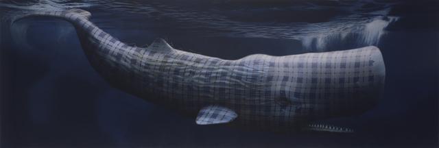 , 'Moby Dick (Merrilees),' 2013, Petzel Gallery