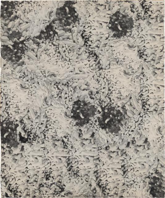 Yayoi Kusama, 'Accretion (No. 1)', 1964, Phillips