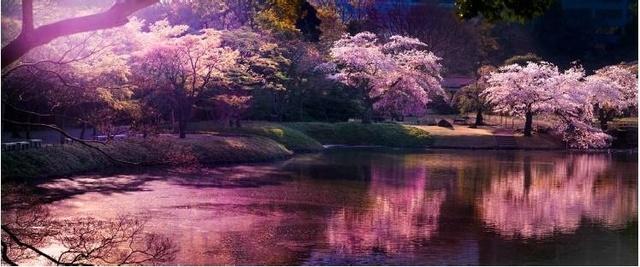 David Drebin, 'Pink Hour', Art Angels