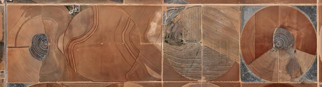 , 'Pivot Irrigation #21, High Plains, Texas Panhandle,' 2011, Flowers