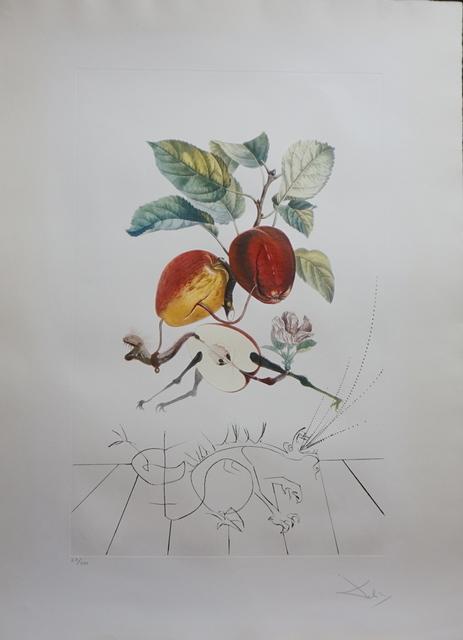Salvador Dalí, 'FlorDali/Les Fruits Eve's Apple', 1969, Print, Etching, Fine Art Acquisitions Dali