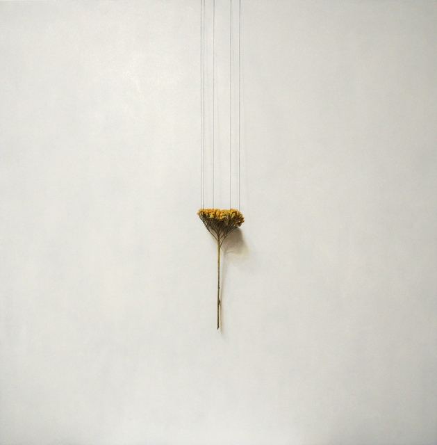 Daiya Yamamoto, 'Achillea, perpendicular belt', 2019, Mottas