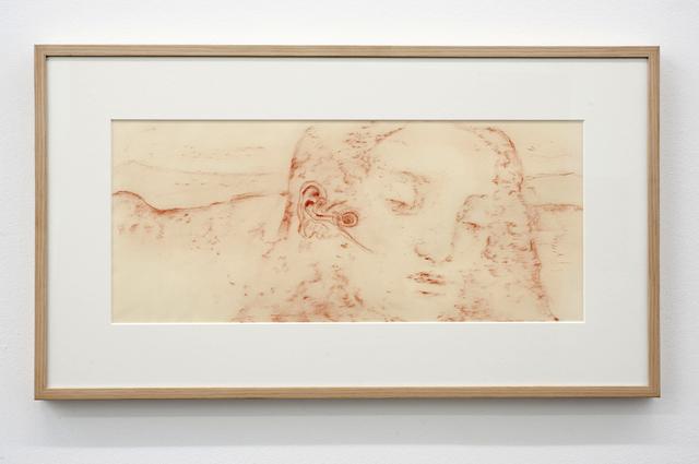 , 'Cochlea Christi,' 2011, Maison Particulière